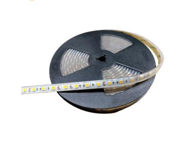 5050 SMD LED Outdoor DC 12V silicon light strips